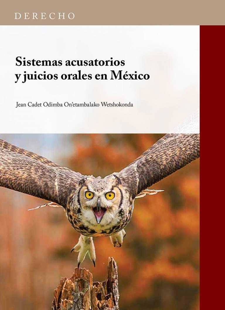 sistemas-acusatorios-y-juicios-en-mexico